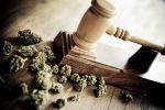 Marijuana and Gavel representing drug crimes